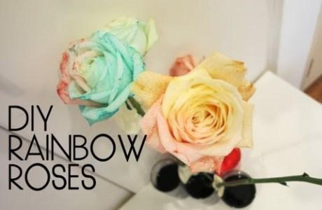 diy-rainbow-roses