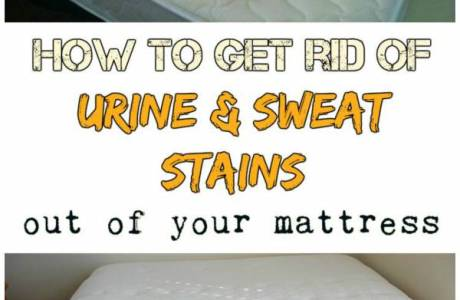 Effectively Cleaning Urine and Sweat Stains From Your Mattress