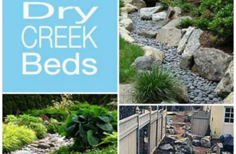 Dry Creek Bed Inspiration For Your Yard