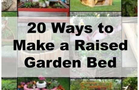 Unique Ideas to Make a Raised Garden Bed