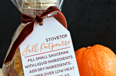 Fall Stove Top Potpourri