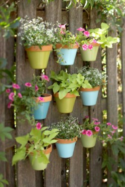 Sweet Green Light This Ing Design Vertical Garden Ideas Designs Pastel Shades Blue 2018 Upright Garden Planters
