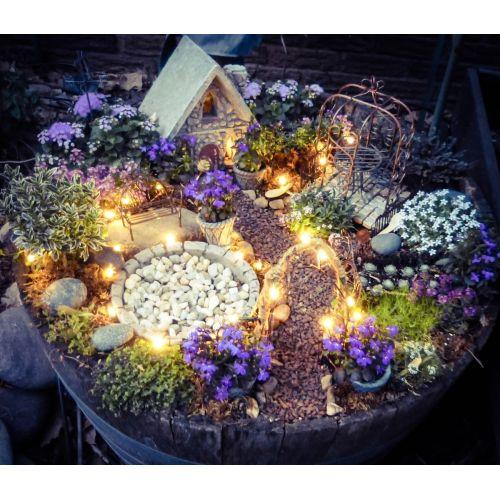 Medium Crop Of Fairy Garden Container Ideas