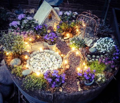 Medium Of Fairy Garden Container Ideas