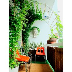 Small Crop Of Balcony Gardening Ideas
