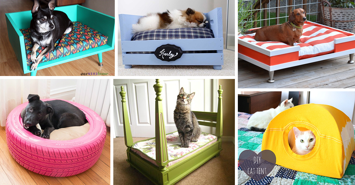 26 Best Diy Pet Bed Ideas And Designs For 2019