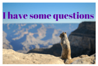 Squirrel asking homeschooling questions