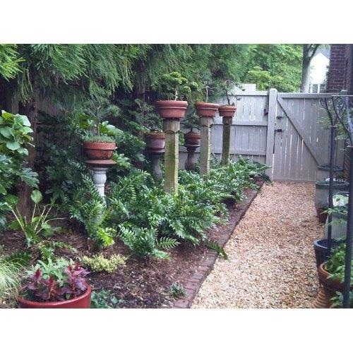 Medium Crop Of Small Backyard Fence