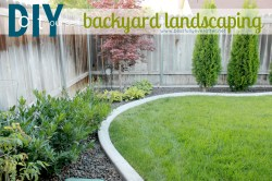 Small Of Backyard Ideas Images
