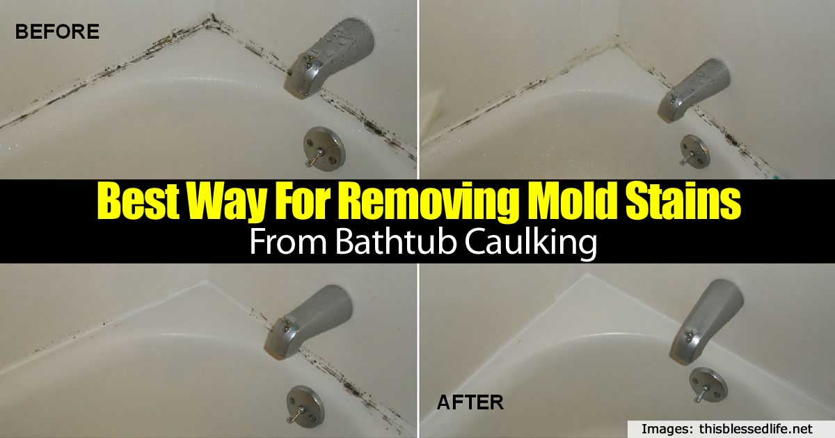 Removing Bathroom Mould How To Remove Black Mold On Window And