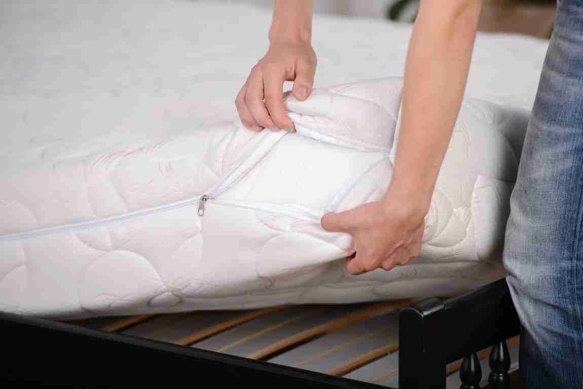 Bed Bugs Mattress Cover 9 Best Bed Bug Mattress Cover Reviews