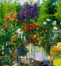 Transformed | Ideas for Home Garden Bedroom Kitchen ...