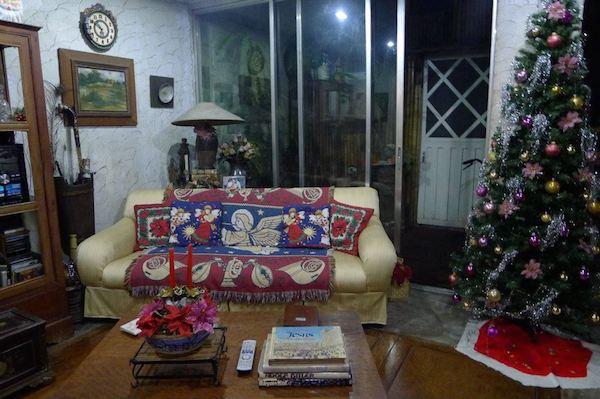 Homemade Parties Christmas House44