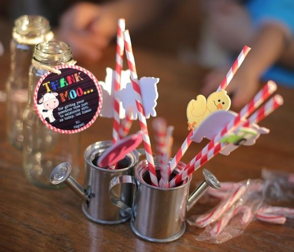Homemade Parties_DIY Party_Barnyard_Miguel16