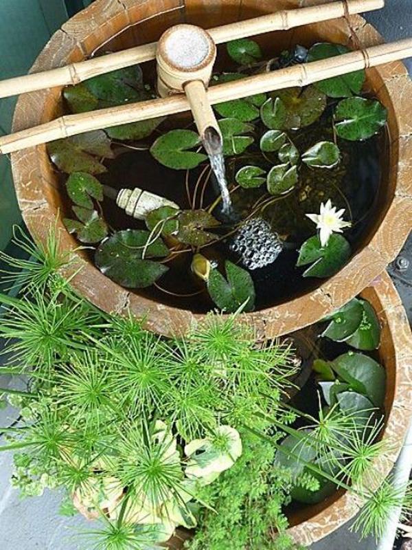 Double Mini Pond Designs