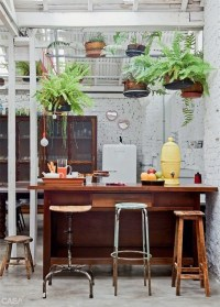 kitchen-hanging-plants