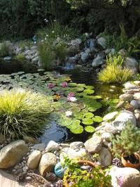 diy-backyard-pond-decoration