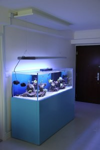 20 Modern Aquariums For Cool Interior Styles | Home Design ...