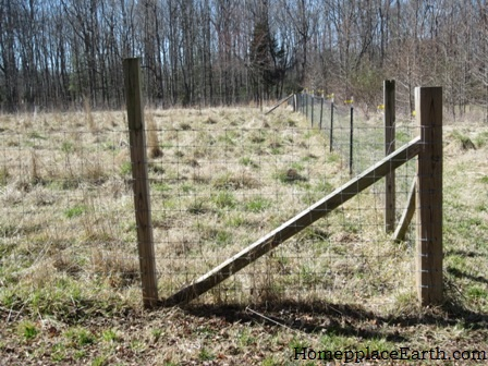 Welded Wire Fence | Homeplace Earth