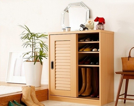 Shoe Cabinet With Doors Models How To Care It Home