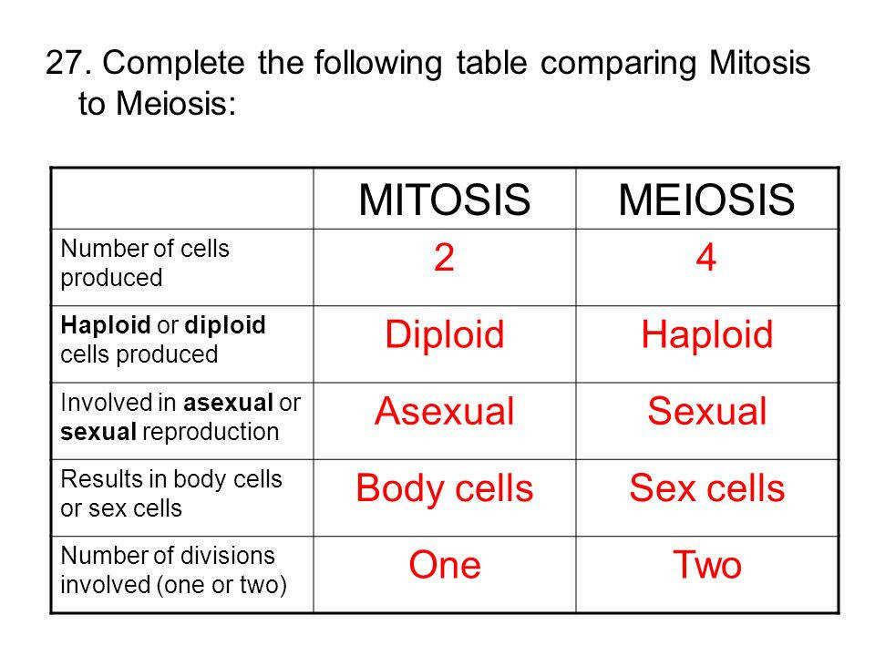 Create A Venn Diagram Comparing Mitosis And Meiosis Introduction