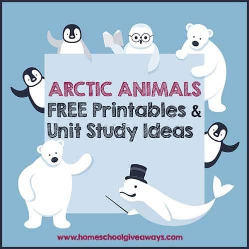 Arctic Animals FREE Printables and Unit Study Ideas - Homeschool