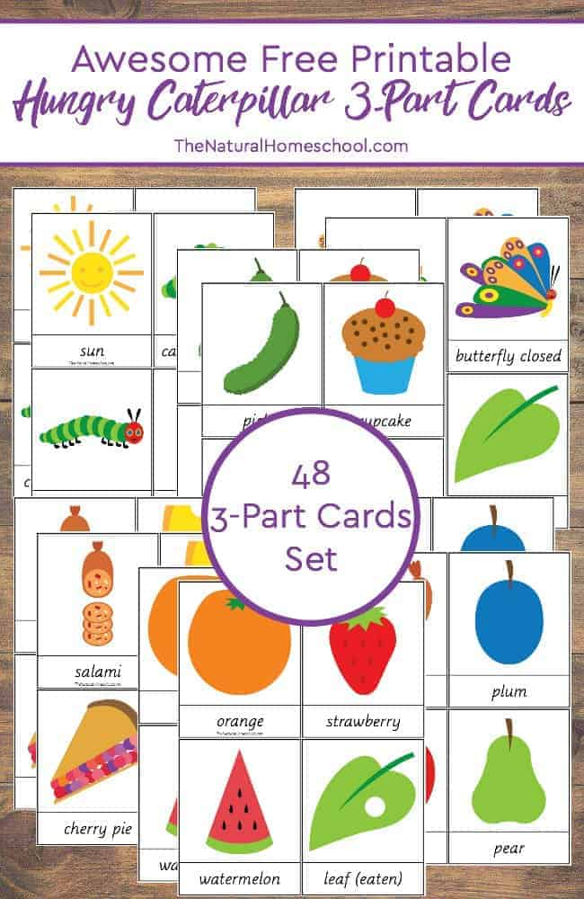 Awesome Free Printable Hungry Caterpillar 3-Part Cards - Homeschool