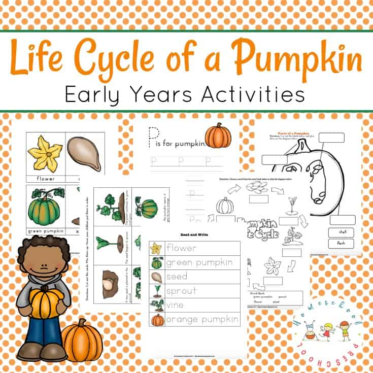 The Perfect Preschool Life Cycle of a Pumpkin Printable Pack