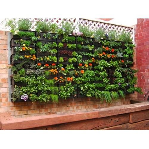 Medium Crop Of Lattice Garden Wall