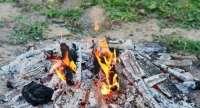 Fireplace Ashes Into Garden - Garden Ftempo