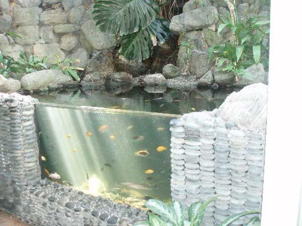 21 small garden backyard aquariums ideas that will for Outdoor aquarium pond planter