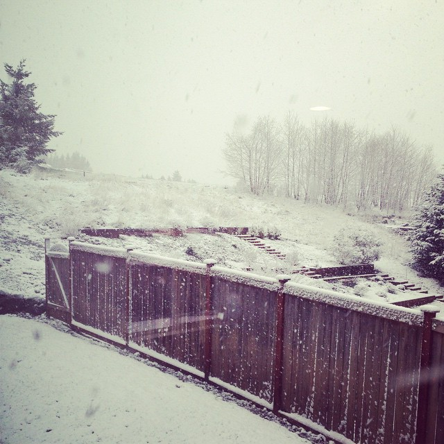 The first fall of snow is not only an event,…