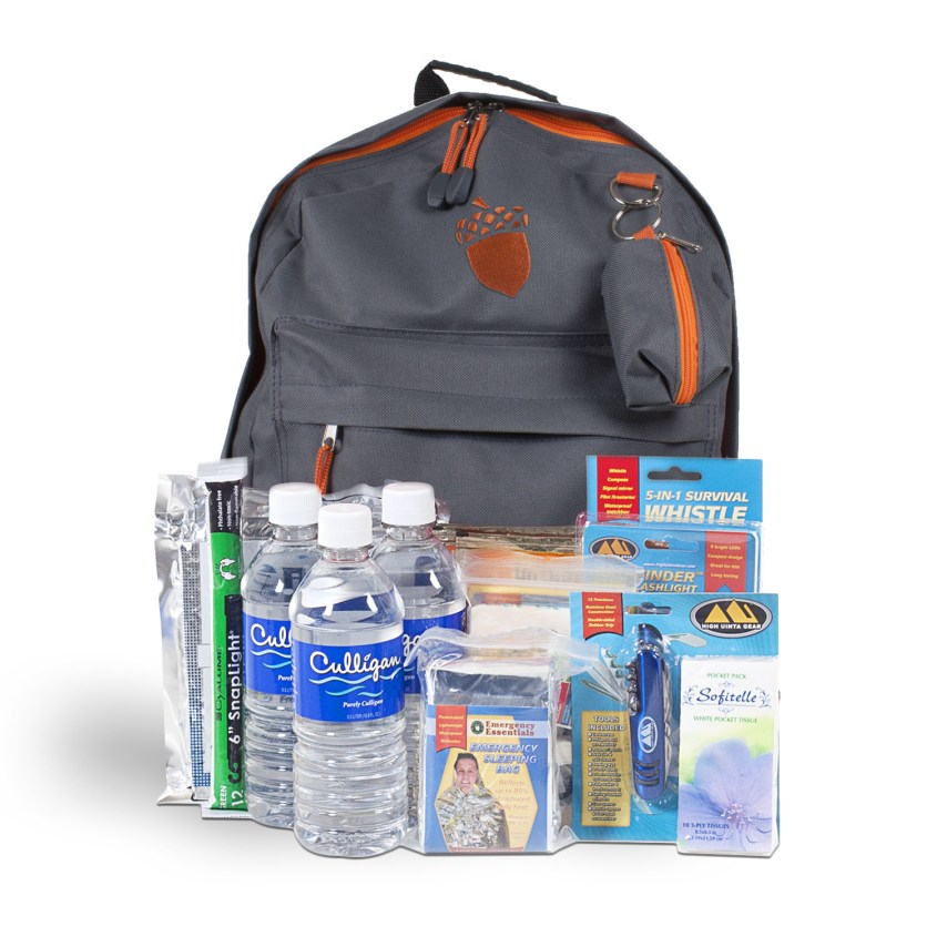 3 Day Lite Emergency Backpack Kit