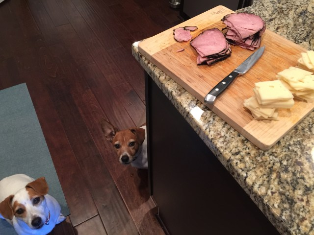 I usually set up a little assembly line with all the ingredients...my dogs were very interested as I was getting this ready!