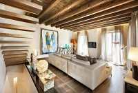 Modern living room with rustic accents. Several proposals