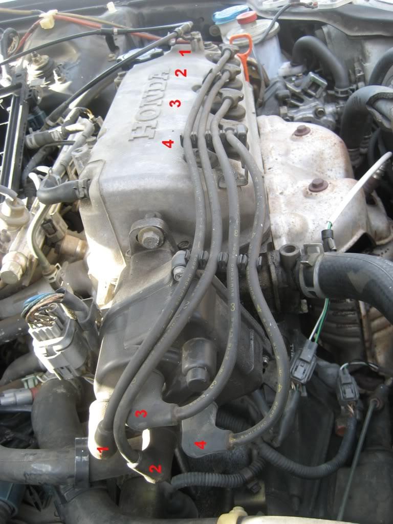 2000 honda civic distributor cap wiring