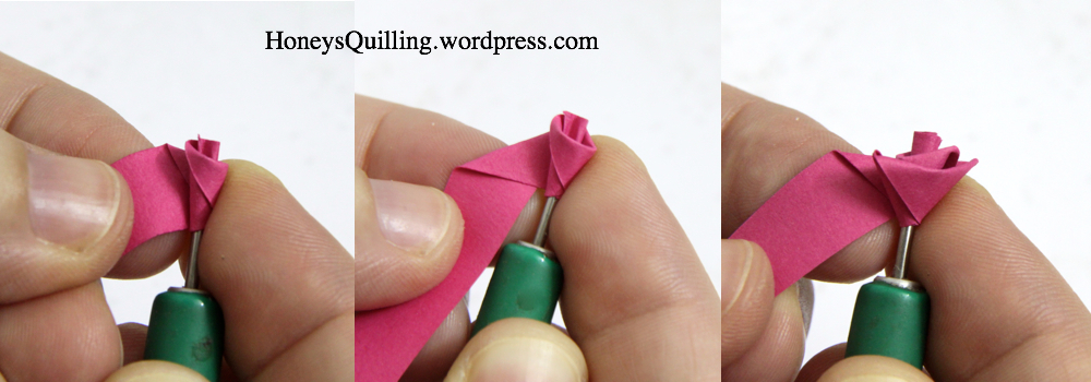 How to make a paper quilled rose free tutorial honey 39 s for Easy quilling designs step by step