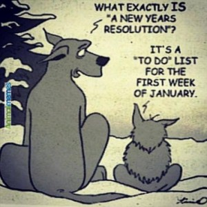 animal-memes-what-is-a-new-years-resolution--369x369