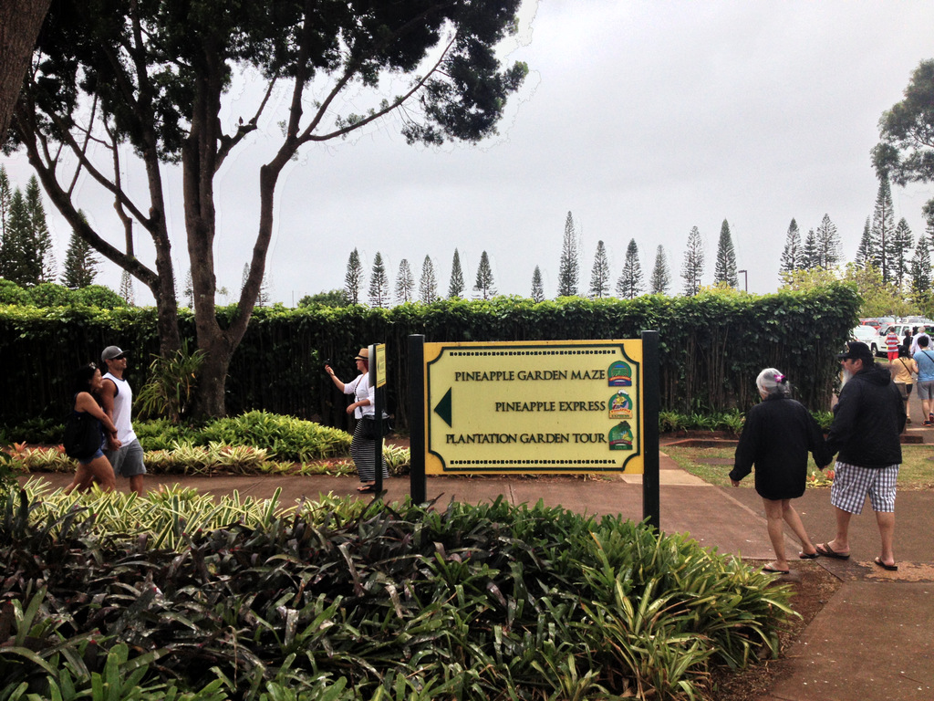 Dole Plantation Tour Review Honolulu Things To Do