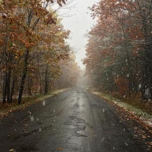 I was just wearing shorts yesterday! fall snow colors winterhellip