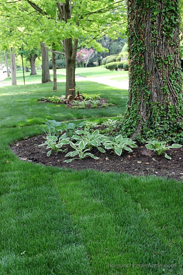 Basics of Fertilizing your Lawn - Hoosier Homemade