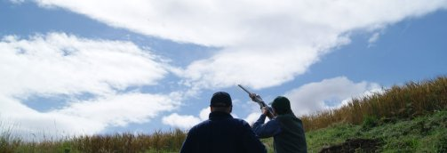 Simulated grouse shooting on the Estate