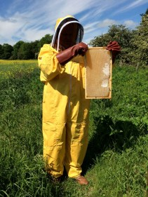 Hopetoun honey from the hives on our Estate