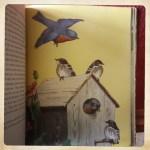 blue bird home