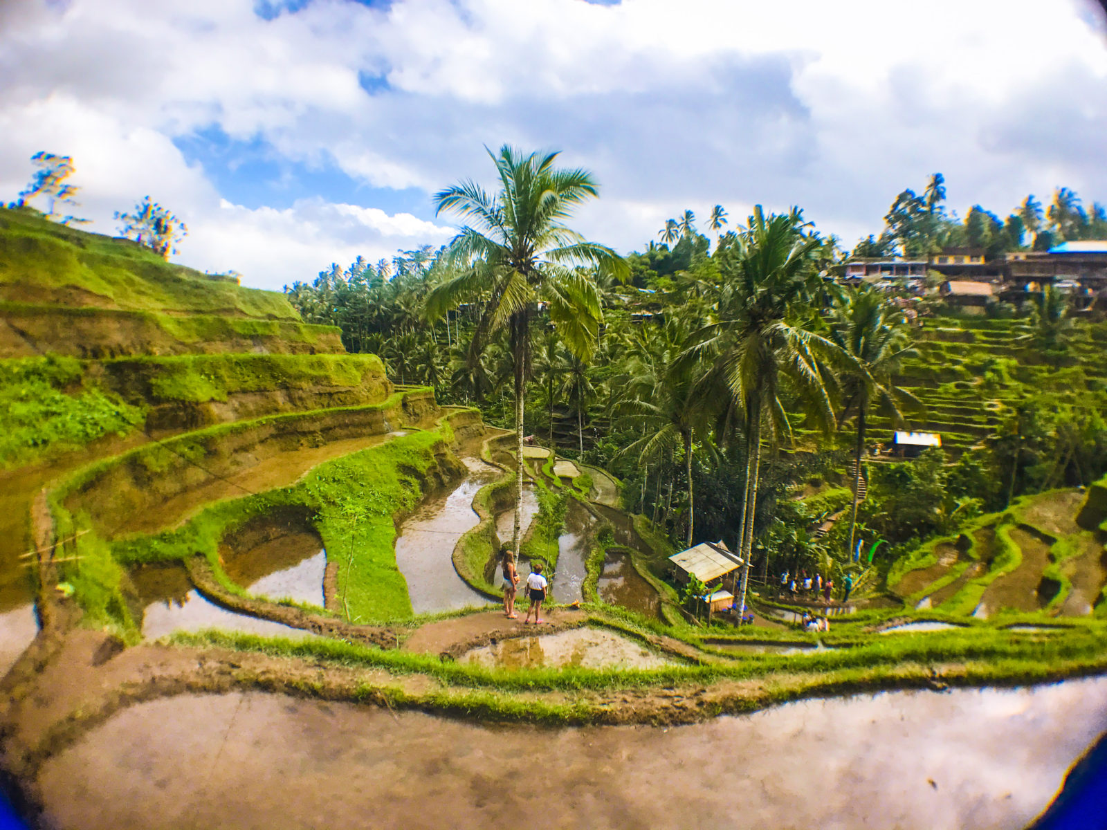 Trip Bali What To Do On A Day Trip In Ubud Bali Hopping Feet