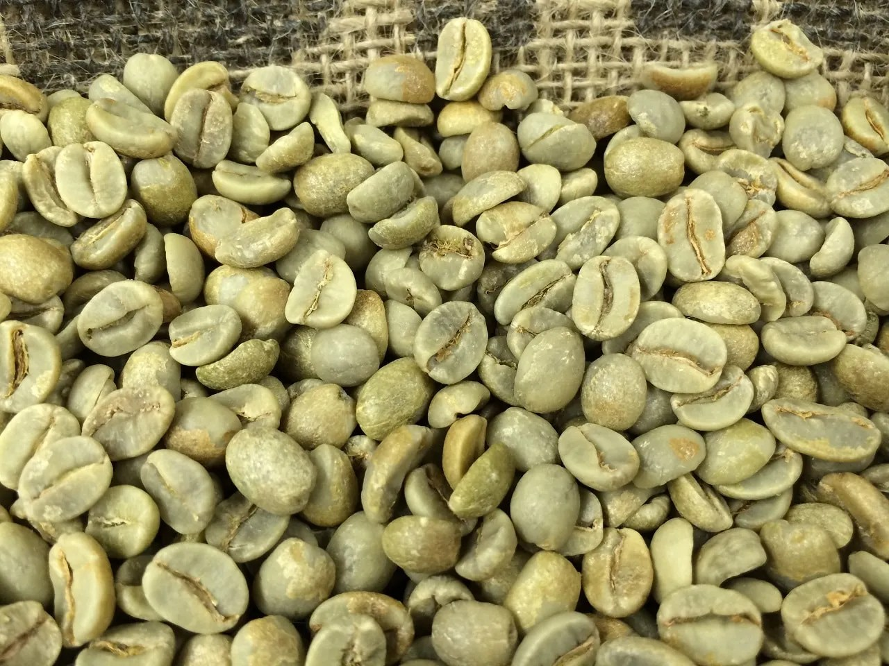 Unroasted Organic Arabica Coffee Beans Green Coffee Coffee Roaster Starter Pack Cafe Hormozi