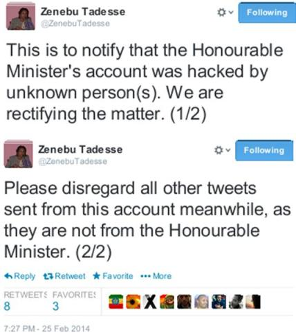 Ethiopia's Minister Zenebu Tadesse disclaims pro-gay tweets