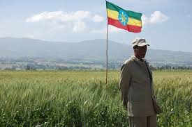 Photo-Ethiopian-farmer.jpg