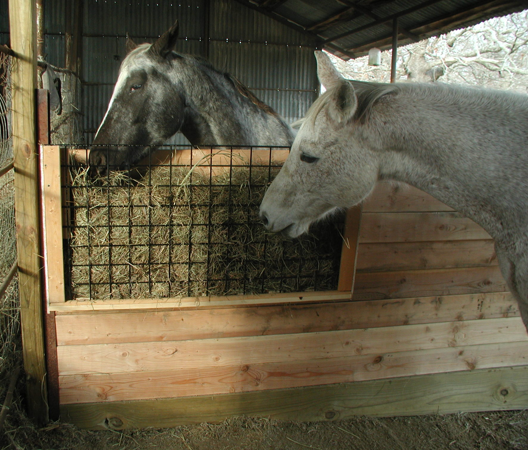 Feed Hay New Hay Feeder For The Stall Horse Ideology