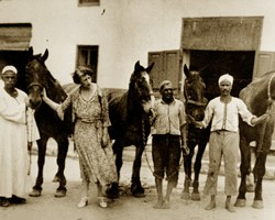 The war that claimed the lives of eight million horses and donkeys